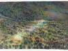 Landschapsportret