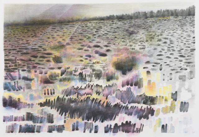 Landschapsportret van Barbara Helmer