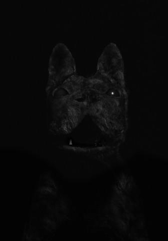 bulldoggklein