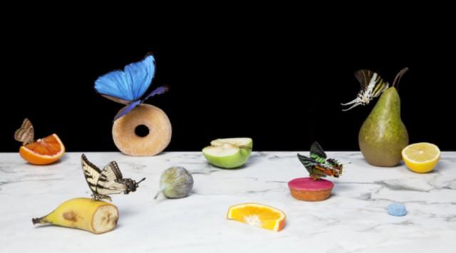 LhGWR-KristavanderNiet-Vlinders