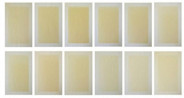 Janneke Kornet - Sunlight Drawings - papier en zonlicht